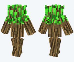 Skin de árbol